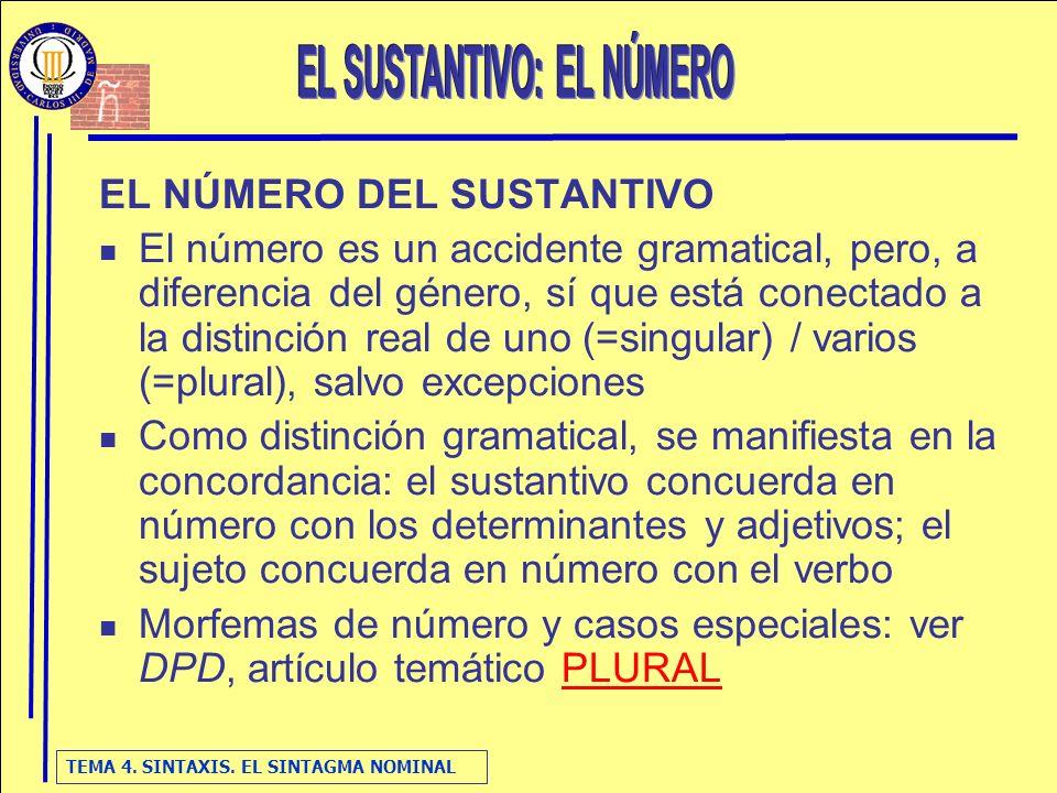 TEMA 4. SINTAXIS. EL SINTAGMA NOMINAL EL NÚMERO DEL SUSTANTIVO El número es un accidente gramatical, pero, a diferencia del género, sí que está conect