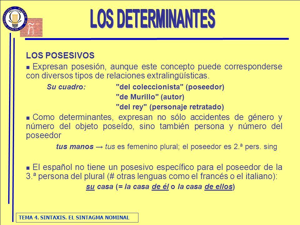 TEMA 4. SINTAXIS. EL SINTAGMA NOMINAL LOS POSESIVOS Expresan posesión, aunque este concepto puede corresponderse con diversos tipos de relaciones extr