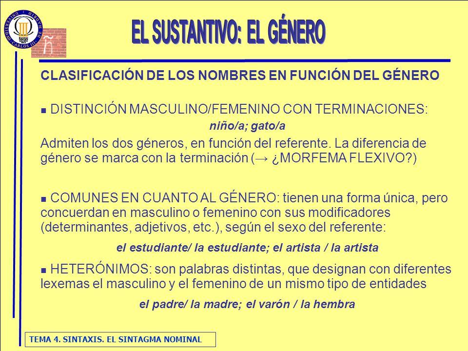 TEMA 4. SINTAXIS. EL SINTAGMA NOMINAL CLASIFICACIÓN DE LOS NOMBRES EN FUNCIÓN DEL GÉNERO DISTINCIÓN MASCULINO/FEMENINO CON TERMINACIONES: niño/a; gato