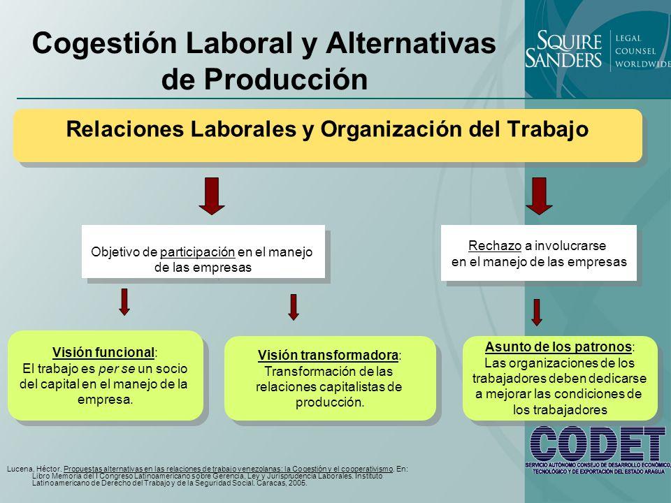 Cogestión Laboral y Formas Alternativas de Producción Visión tradicional (Cuarta República) Ley de Representación de los Trabajadores en los Directorios de las Empresas del Estado, 1966.