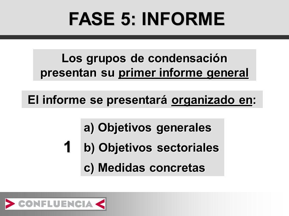 FASE 5: INFORME Los grupos de condensación presentan su primer informe general El informe se presentará organizado en: a) Objetivos generales b) Objetivos sectoriales c) Medidas concretas 1