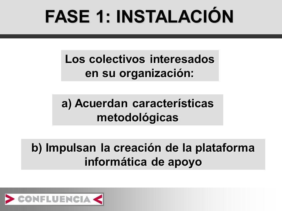 FASE 1: INSTALACIÓN Los colectivos interesados en su organización: a) Acuerdan características metodológicas b) Impulsan la creación de la plataforma