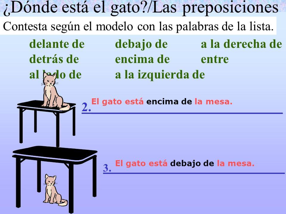 ¿Dónde está el gato?/Las preposiciones Contesta según el modelo con las palabras de la lista. delante dedebajo dea la derecha de detrás deencima deent