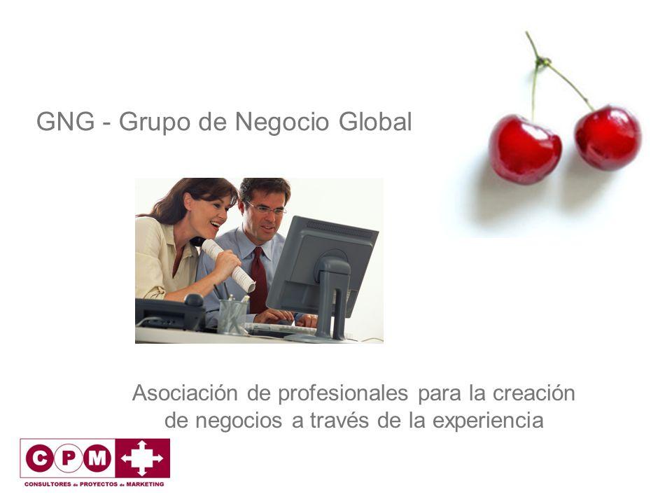 GNG - Grupo de Negocio Global Asociación de profesionales para la creación de negocios a través de la experiencia