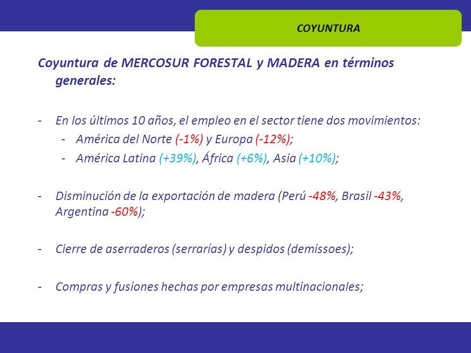 COYUNTURA Coyuntura de MERCOSUR FORESTAL y MADERA en términos generales: -En los últimos 10 años, el empleo en el sector tiene dos movimientos: -Améri