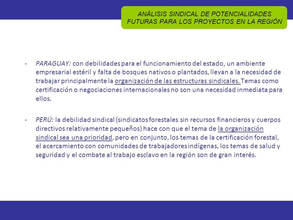 ANÁLISIS SINDICAL DE POTENCIALIDADES FUTURAS PARA LOS PROYECTOS EN LA REGIÓN -PARAGUAY: con debilidades para el funcionamiento del estado, un ambiente