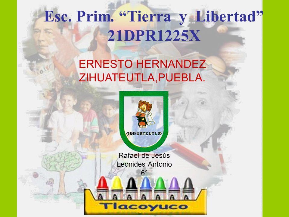 ERNESTO HERNANDEZ ZIHUATEUTLA,PUEBLA.Esc. Prim.