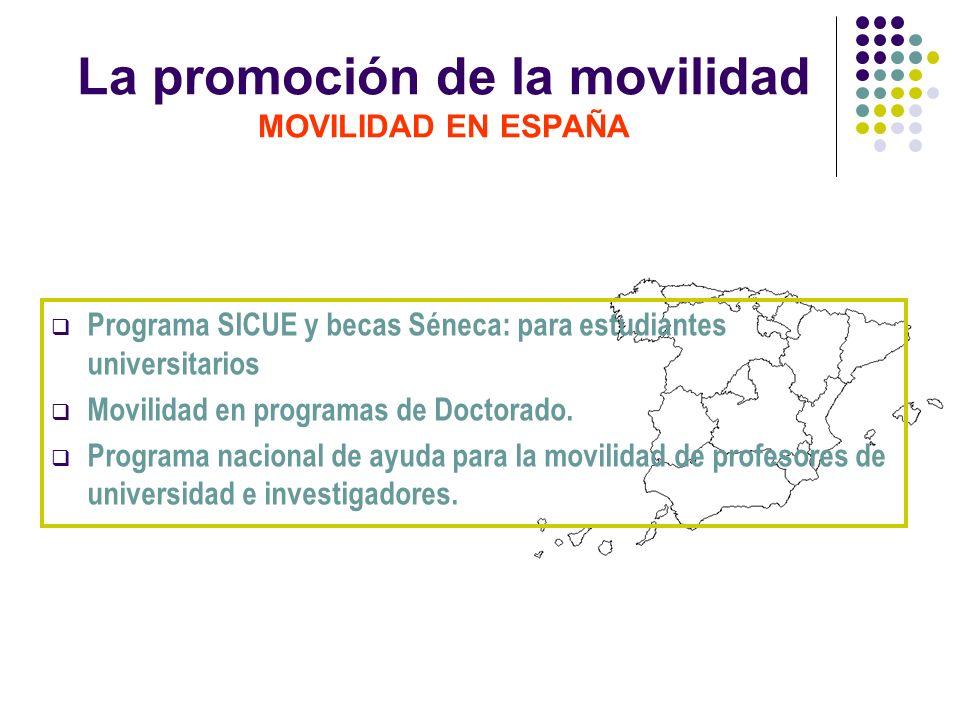 La promoción de la movilidad MOVILIDAD EN ESPAÑA Programa SICUE y becas Séneca: para estudiantes universitarios Movilidad en programas de Doctorado. P