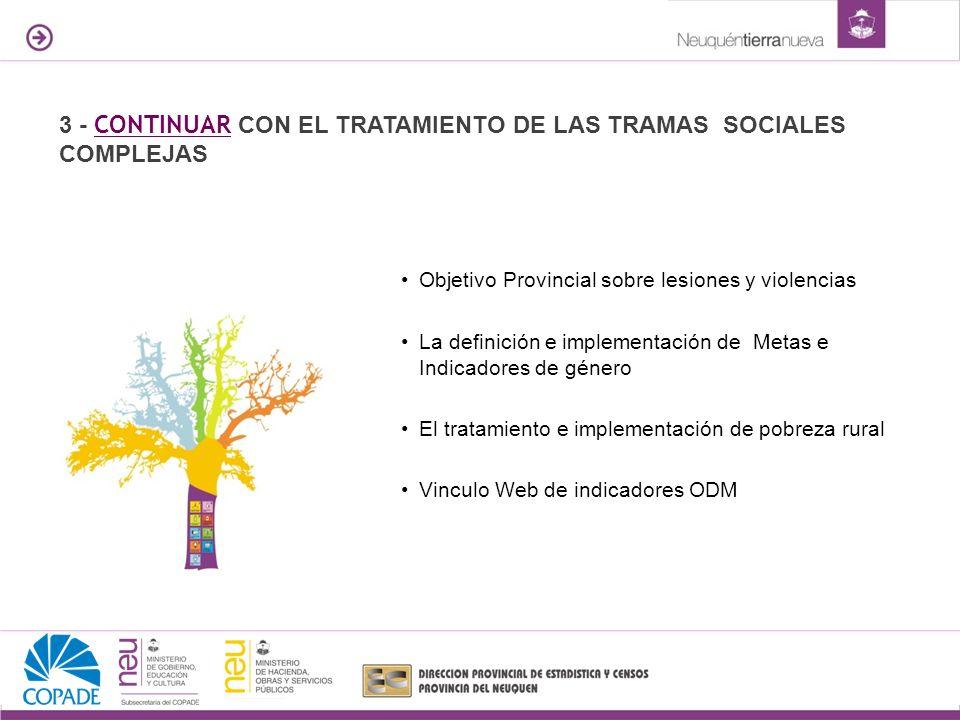 Objetivo Provincial sobre lesiones y violencias La definición e implementación de Metas e Indicadores de género El tratamiento e implementación de pob