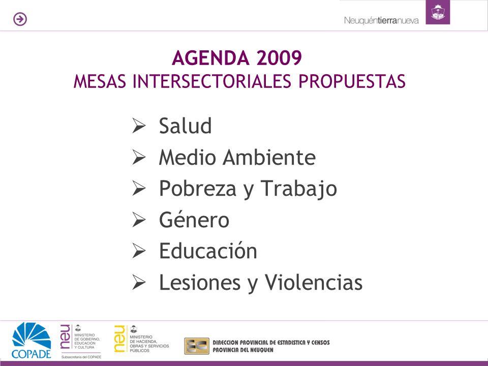 AGENDA 2009 MESAS INTERSECTORIALES PROPUESTAS Salud Medio Ambiente Pobreza y Trabajo Género Educación Lesiones y Violencias