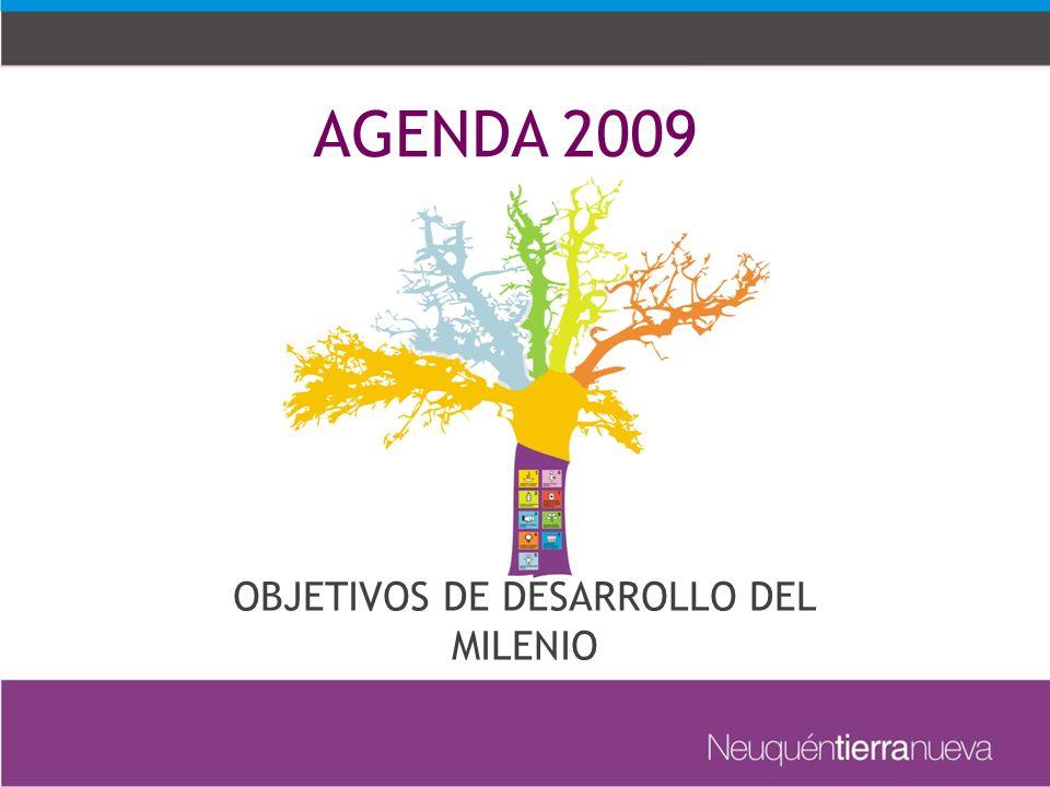 AGENDA 2009 OBJETIVOS DE DESARROLLO DEL MILENIO