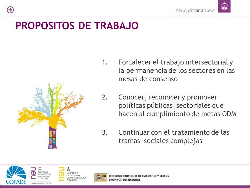 1.Fortalecer el trabajo intersectorial y la permanencia de los sectores en las mesas de consenso 2.Conocer, reconocer y promover políticas públicas se