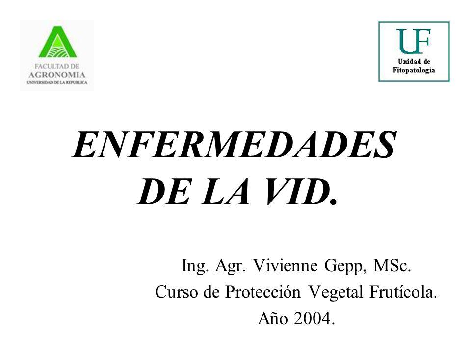ENFERMEDADES DE LA VID.Ing. Agr. Vivienne Gepp, MSc.