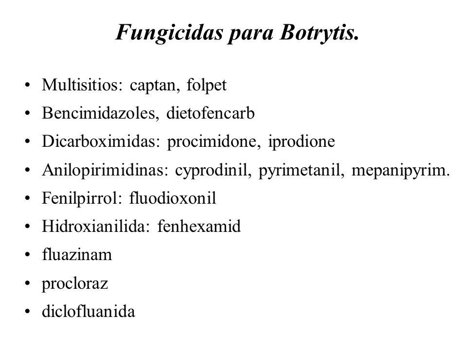 Resistencia a Botrytis Racimos compactos Susceptibilidad Fuente: Ellison, Ash y McDonald. 1997