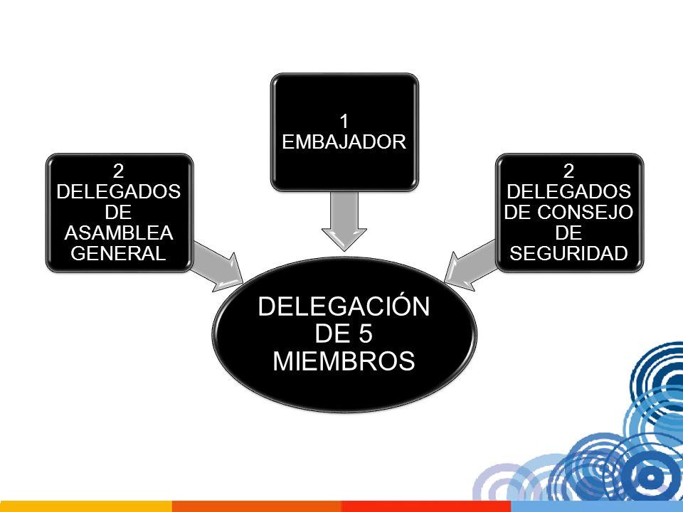 DELEGACIÓN DE 5 MIEMBROS 2 DELEGADOS DE ASAMBLEA GENERAL 1 EMBAJADOR 2 DELEGADOS DE CONSEJO DE SEGURIDAD