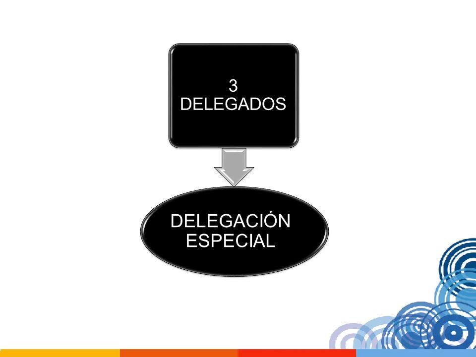 DELEGACIÓN ESPECIAL 3 DELEGADOS