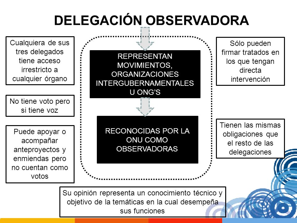 DELEGACIÓN OBSERVADORA REPRESENTAN MOVIMIENTOS, ORGANIZACIONES INTERGUBERNAMENTALES U ONGS RECONOCIDAS POR LA ONU COMO OBSERVADORAS Cualquiera de sus
