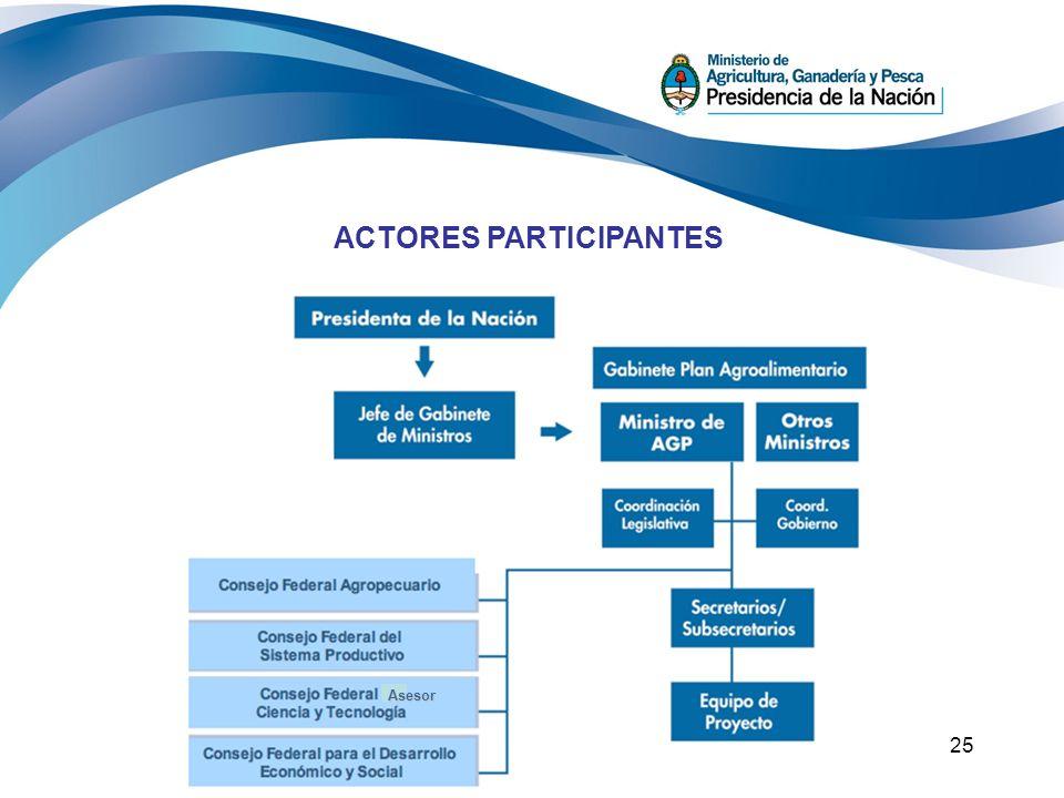 25 ACTORES PARTICIPANTES Asesor