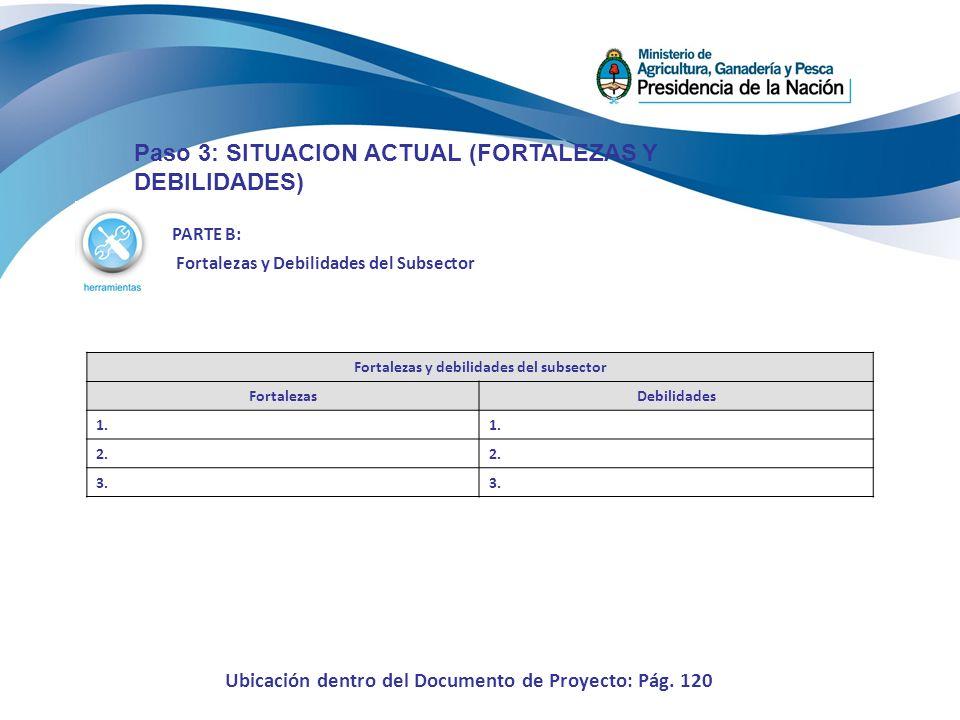 PARTE B: Fortalezas y Debilidades del Subsector Paso 3: SITUACION ACTUAL (FORTALEZAS Y DEBILIDADES) Fortalezas y debilidades del subsector FortalezasD