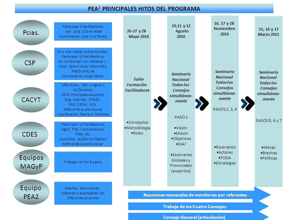 PEA 2 PRINCIPALES HITOS DEL PROGRAMA Participan 5 facilitadores por pcia. 115 en total Coordinación José Luis Perez 10 o más mesas subsectoriales. Par