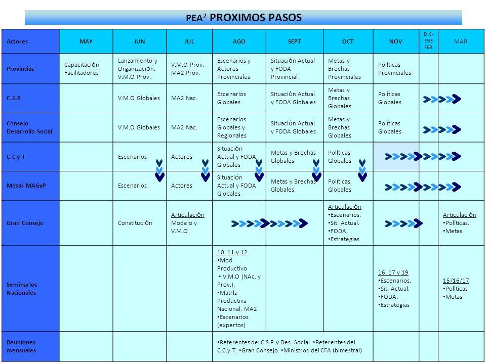 PEA 2 PROXIMOS PASOS ActoresMAYJUNJULAGOSEPTOCTNOV DIC- ENE FEB MAR Provincias Capacitaci ó n Facilitadores Lanzamiento y Organizaci ó n. V.M.O Prov.