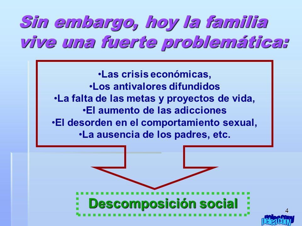 4 Las crisis económicas, Los antivalores difundidos La falta de las metas y proyectos de vida, El aumento de las adicciones El desorden en el comportamiento sexual, La ausencia de los padres, etc.
