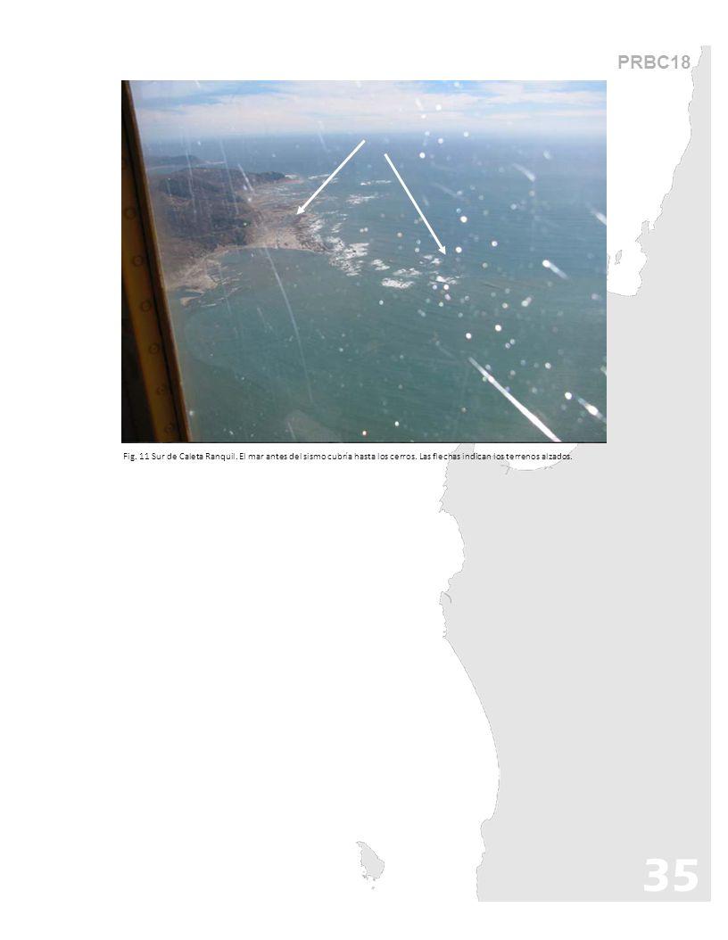 PRBC18 Fig. 11 Sur de Caleta Ranquil. El mar antes del sismo cubría hasta los cerros. Las flechas indican los terrenos alzados. 35