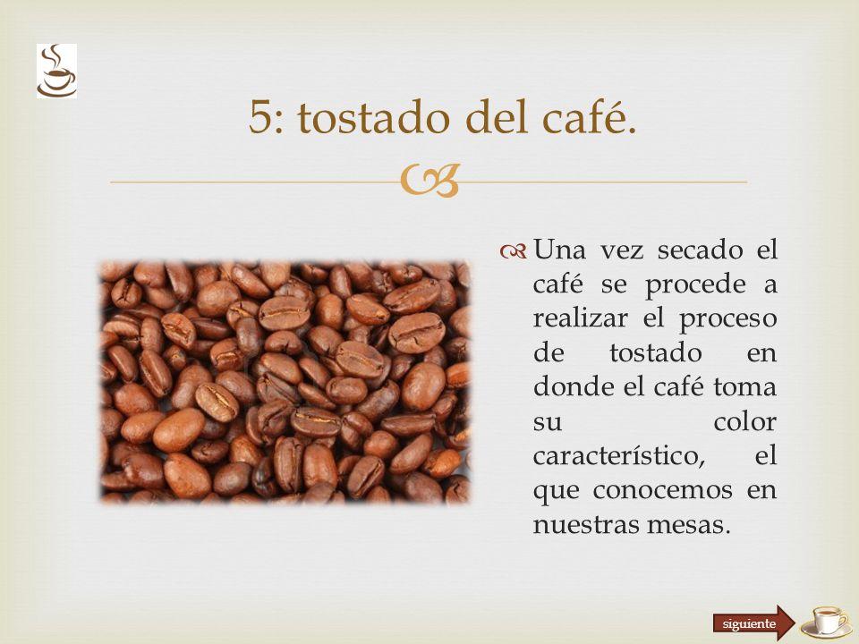 Una vez secado el café se procede a realizar el proceso de tostado en donde el café toma su color característico, el que conocemos en nuestras mesas.