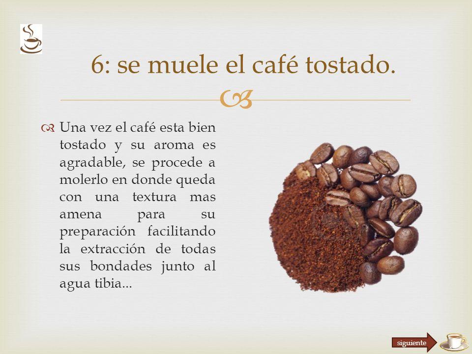 Una vez el café esta bien tostado y su aroma es agradable, se procede a molerlo en donde queda con una textura mas amena para su preparación facilitando la extracción de todas sus bondades junto al agua tibia...