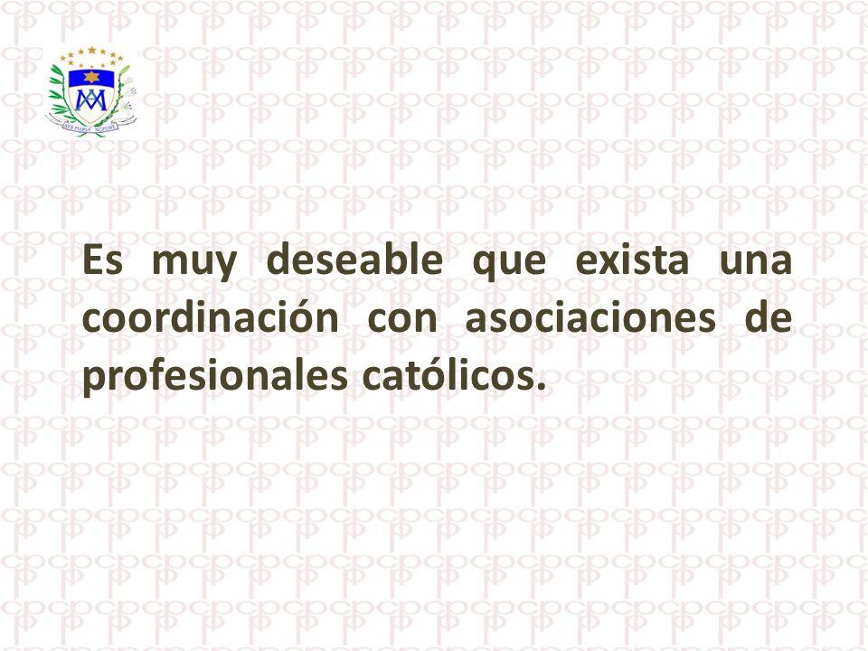 Es muy deseable que exista una coordinación con asociaciones de profesionales católicos.