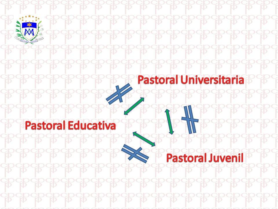 La pastoral universitaria no puede llevarse a cabo por medio de agentes dispersos, requiere una estructura orgánica que actúe en conjunto con la pastoral diocesana.