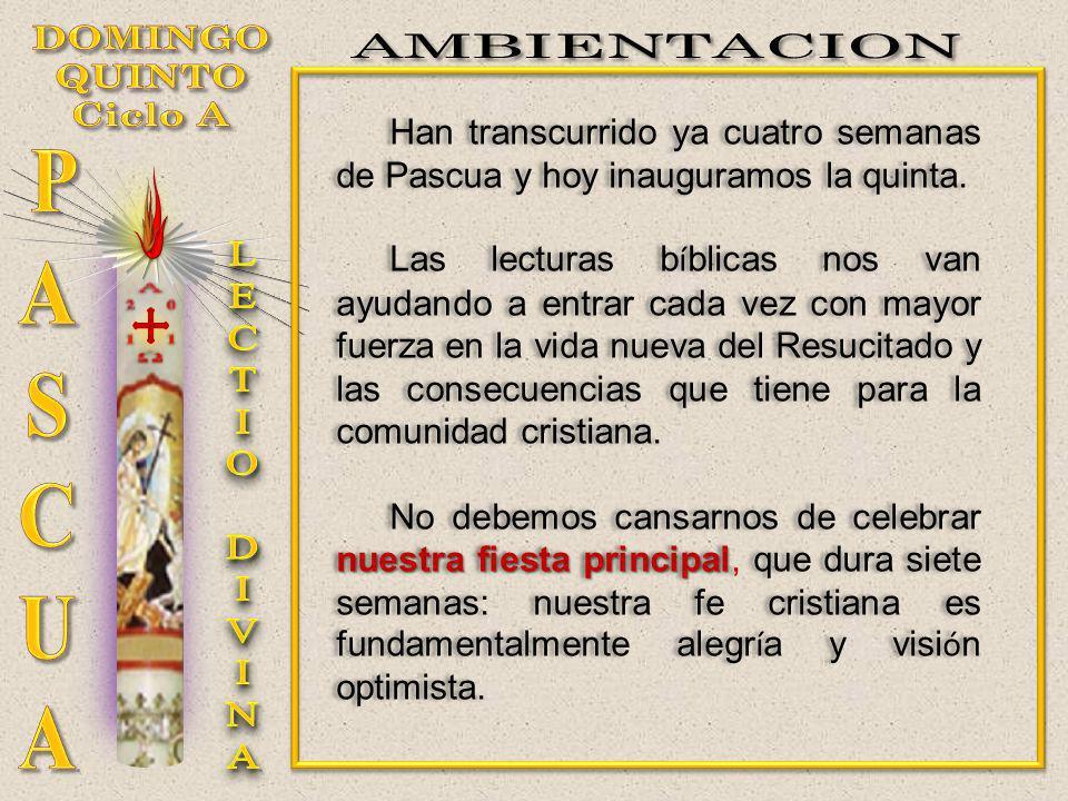 Ya en direcci ó n a Pentecost é s, a muchos les ayudar á tambi é n el recuerdo de la Virgen Mar í a, en el mes de mayo.