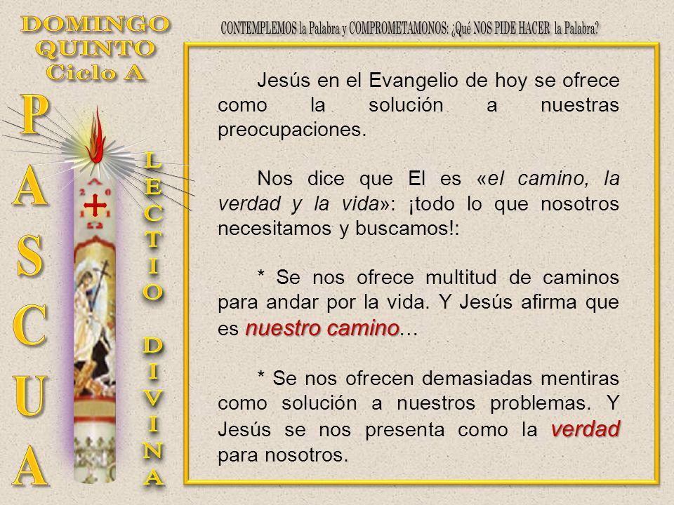 Jesús en el Evangelio de hoy se ofrece como la solución a nuestras preocupaciones. Nos dice que El es «el camino, la verdad y la vida»: ¡todo lo que n