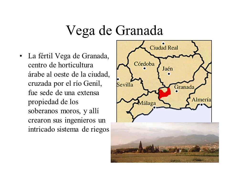 Vega de Granada La fértil Vega de Granada, centro de horticultura árabe al oeste de la ciudad, cruzada por el río Genil, fue sede de una extensa propi
