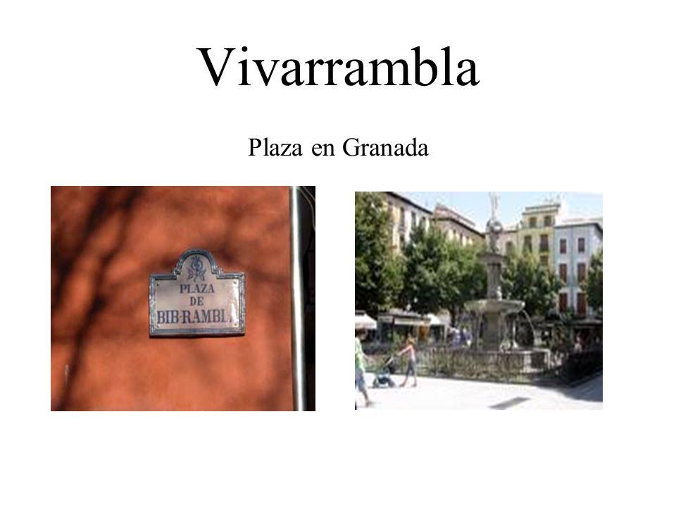 Zacatín Una calle estrecha que lleva a la Alhambra--sigue recto para abajo, se encuenta con la plaza Birrambla.