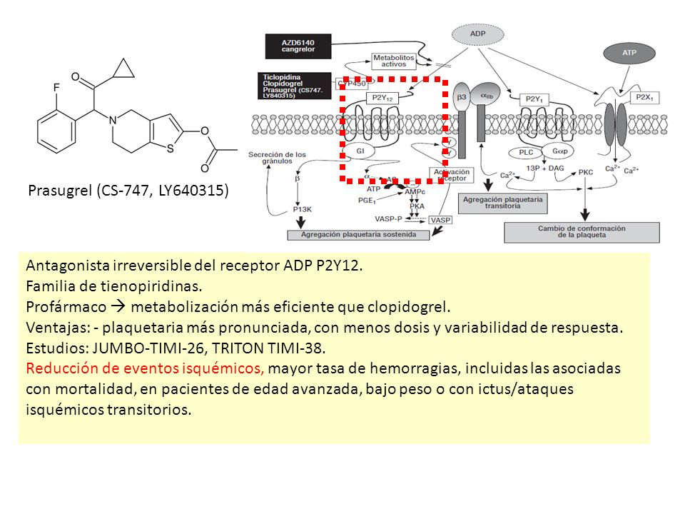 INTRODUCCIÓN: PRASUGREL.Antagonista irreversible del receptor ADP P2Y12.