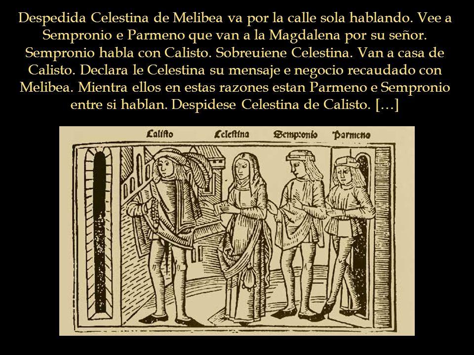 Despedida Celestina de Melibea va por la calle sola hablando. Vee a Sempronio e Parmeno que van a la Magdalena por su señor. Sempronio habla con Calis