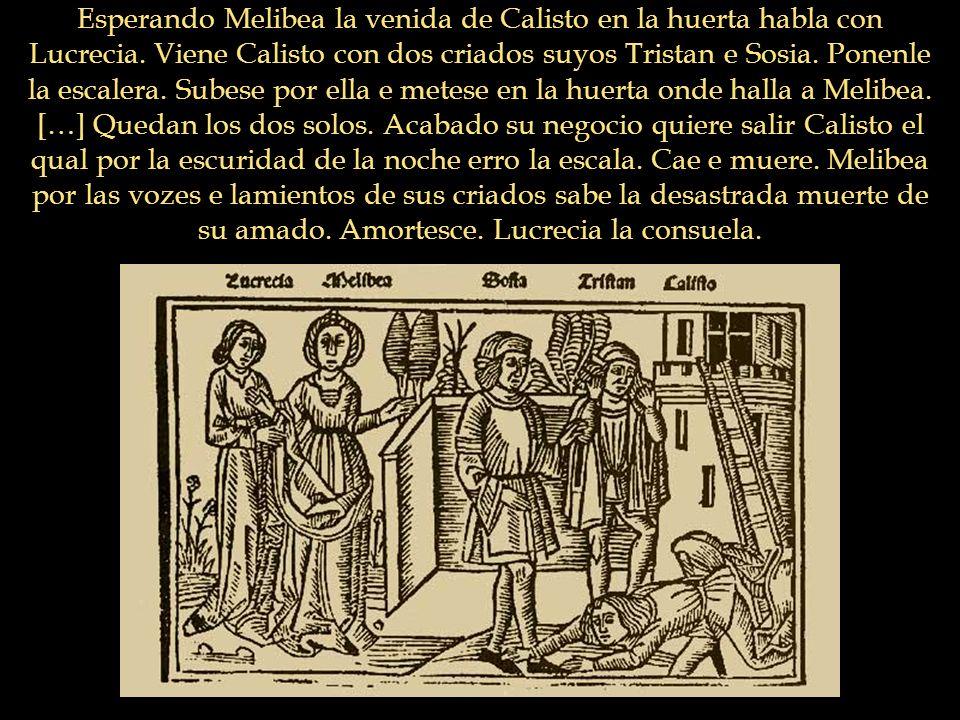 Esperando Melibea la venida de Calisto en la huerta habla con Lucrecia. Viene Calisto con dos criados suyos Tristan e Sosia. Ponenle la escalera. Sube