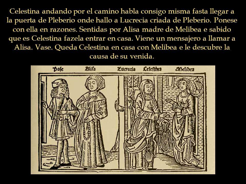 Celestina andando por el camino habla consigo misma fasta llegar a la puerta de Pleberio onde hallo a Lucrecia criada de Pleberio. Ponese con ella en