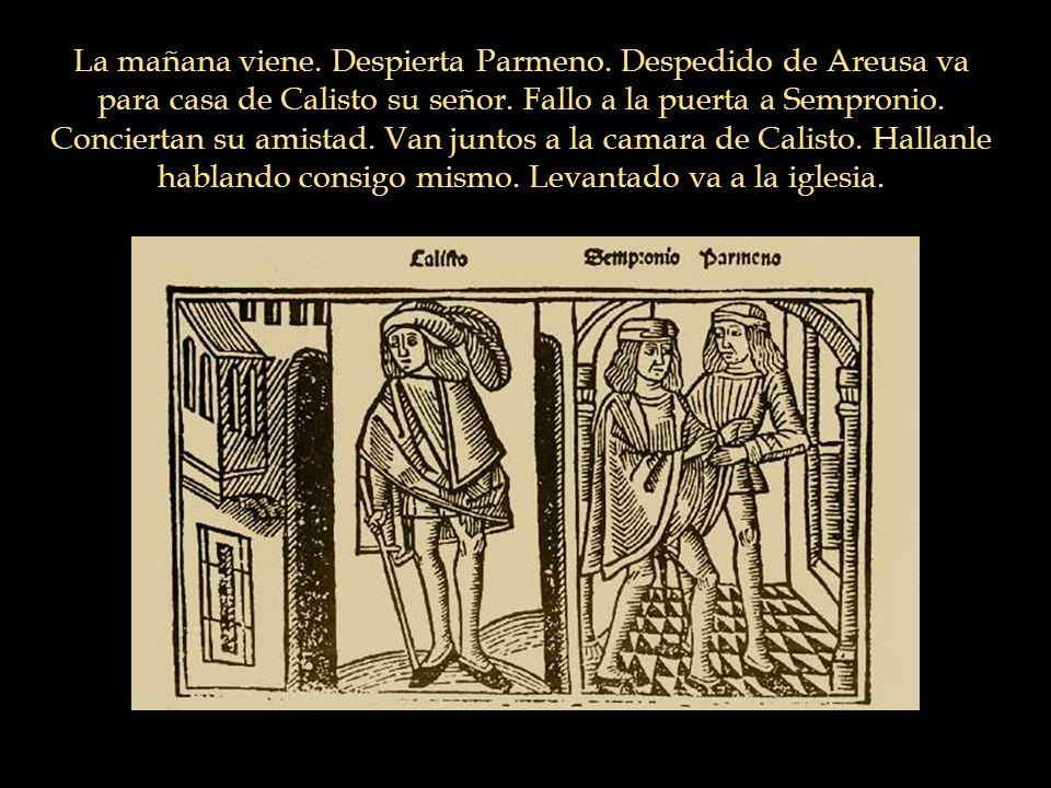 La mañana viene. Despierta Parmeno. Despedido de Areusa va para casa de Calisto su señor. Fallo a la puerta a Sempronio. Conciertan su amistad. Van ju