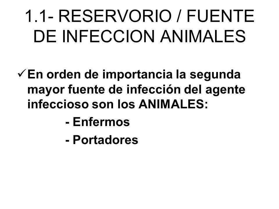 En orden de importancia la segunda mayor fuente de infección del agente infeccioso son los ANIMALES: - Enfermos - Portadores 1.1- RESERVORIO / FUENTE