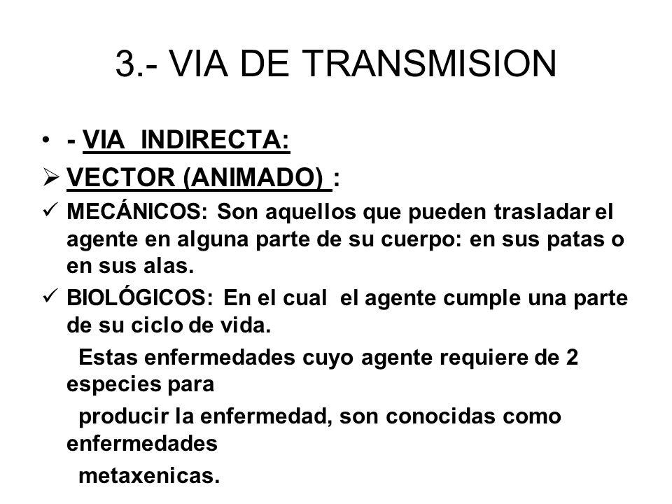 3.- VIA DE TRANSMISION - VIA INDIRECTA: VECTOR (ANIMADO) : MECÁNICOS: Son aquellos que pueden trasladar el agente en alguna parte de su cuerpo: en sus