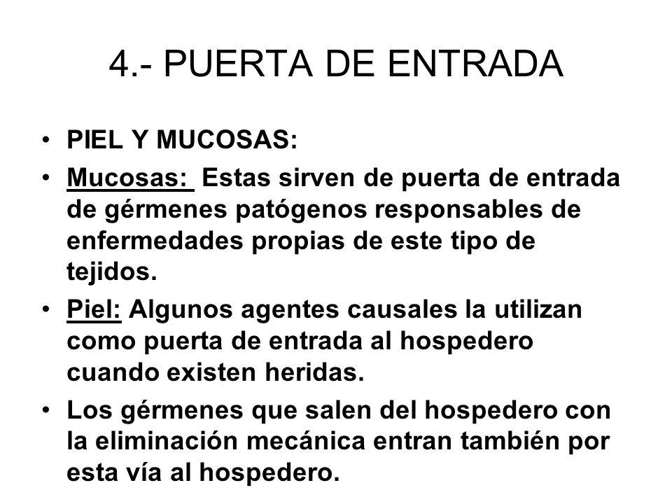4.- PUERTA DE ENTRADA PIEL Y MUCOSAS: Mucosas: Estas sirven de puerta de entrada de gérmenes patógenos responsables de enfermedades propias de este ti