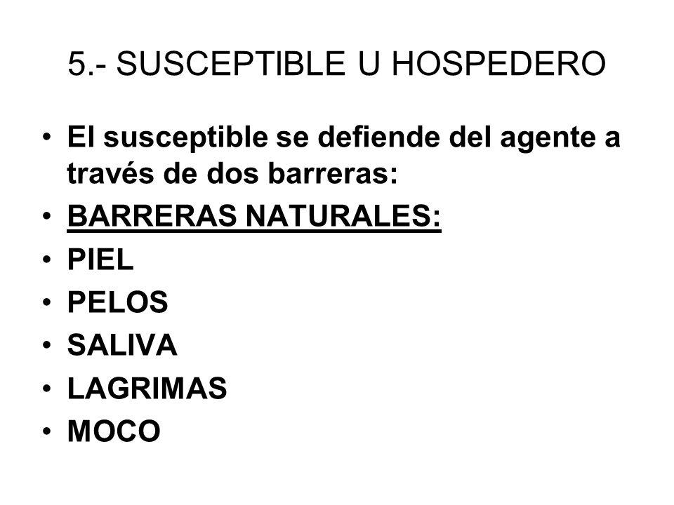 5.- SUSCEPTIBLE U HOSPEDERO El susceptible se defiende del agente a través de dos barreras: BARRERAS NATURALES: PIEL PELOS SALIVA LAGRIMAS MOCO