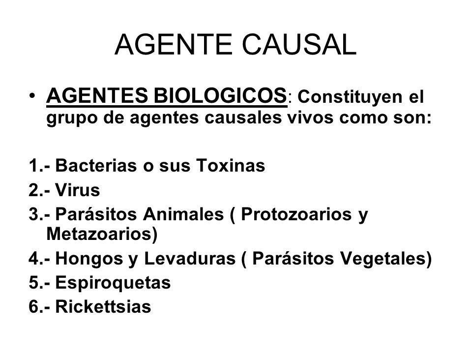 AGENTE CAUSAL AGENTES BIOLOGICOS : Constituyen el grupo de agentes causales vivos como son: 1.- Bacterias o sus Toxinas 2.- Virus 3.- Parásitos Animal