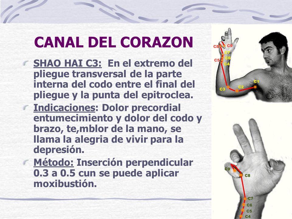 CANAL DEL CORAZON SHAO HAI C3: En el extremo del pliegue transversal de la parte interna del codo entre el final del pliegue y la punta del epitroclea.
