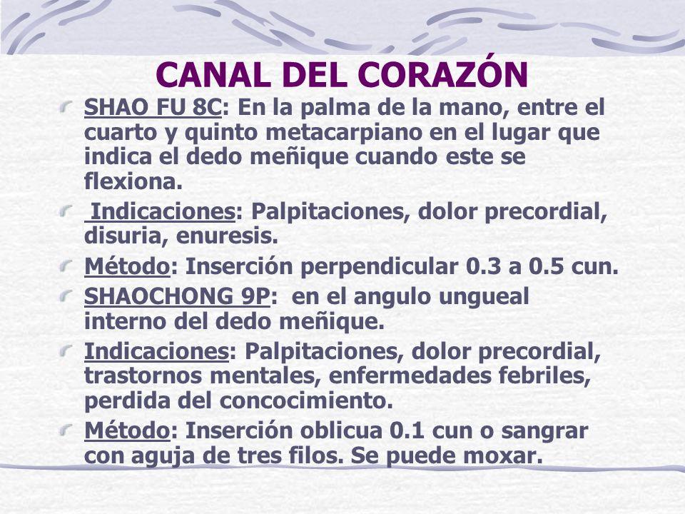 CANAL DEL CORAZÓN SHAO FU 8C: En la palma de la mano, entre el cuarto y quinto metacarpiano en el lugar que indica el dedo meñique cuando este se flexiona.