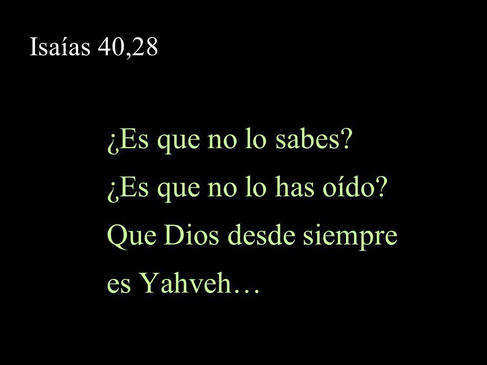 Isaías 40,28 …creador de los confines de la tierra, que no se cansa ni se fatiga, y cuya inteligencia es inescrutable.