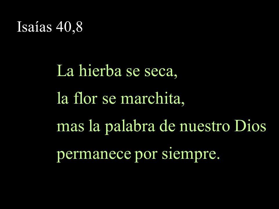 Isaías 55,10-11 55,10 Como descienden la lluvia y la nieve de los cielos y no vuelven allá, sino que empapan la tierra…