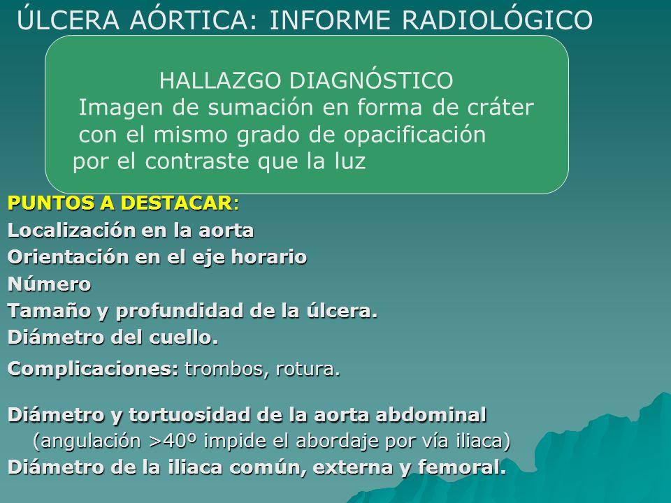 PUNTOS A DESTACAR: Localización en la aorta Orientación en el eje horario Número Tamaño y profundidad de la úlcera. Diámetro del cuello. Complicacione